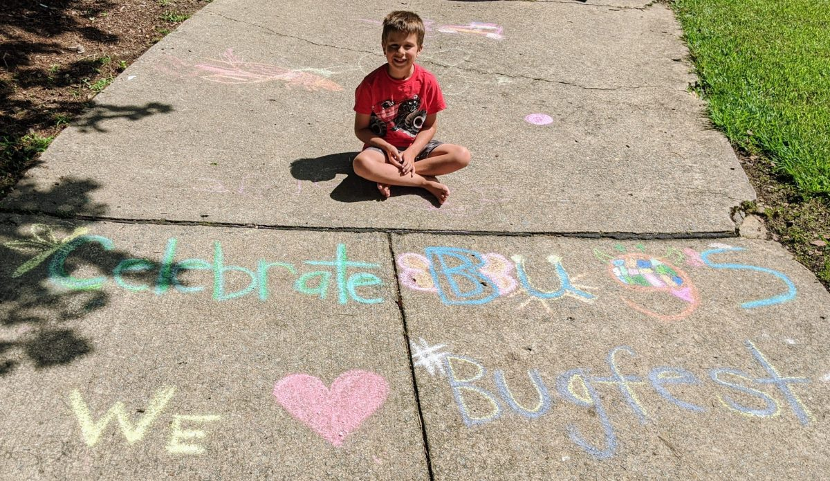 "A little boy and chalk that says ""celebrate bugs we love bugfest"""