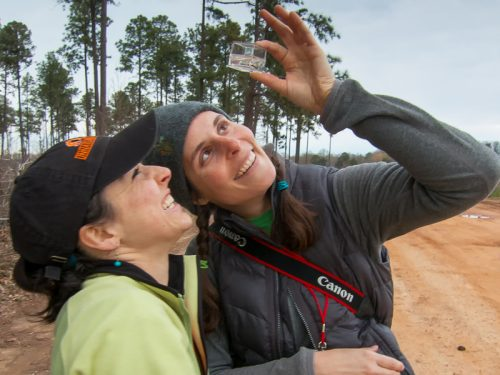 NCMNS Teacher Education unit receives 2020 Exceptional Environmental Education Program Award