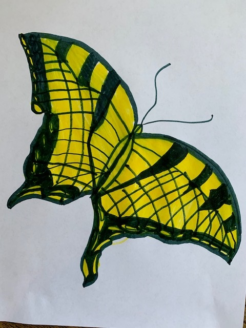 Drawing of a yellow butterfly