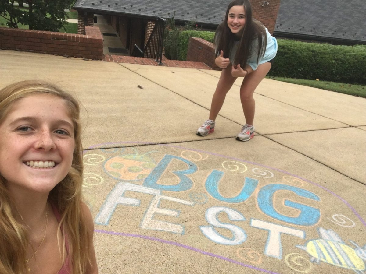 Two young girls and a chalk bugfest