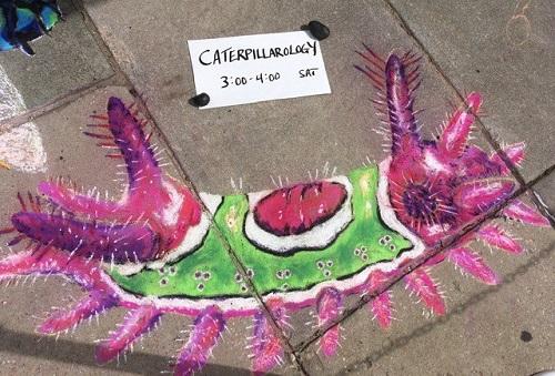 Caterpillar in chalk