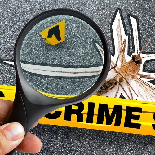 Crime scene tape, a bug outline and a magnifying glass