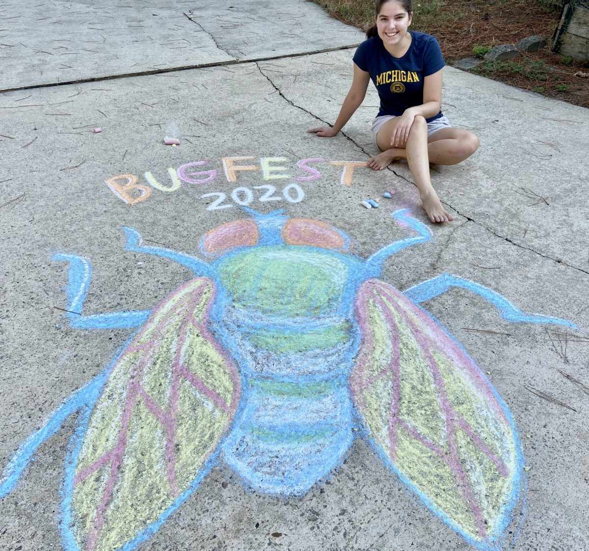 A beautiful fly drawn in chalk
