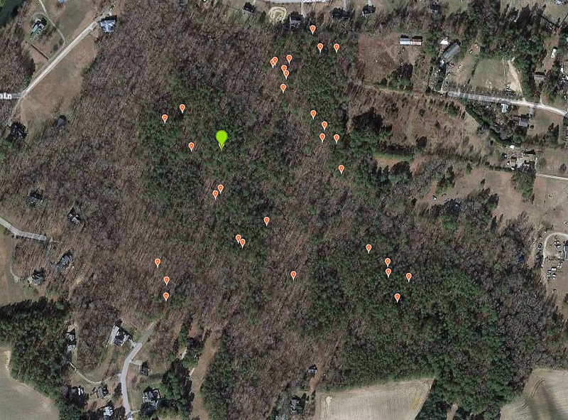 Map showing widespread occurrence of Ghost Pipes in the forest. Green icon is where I saw the first clump of plants. (iNaturalist map of my submitted observations) Google Maps. Map data copyright 2020, Imagery copyright 2020, Maxar Technologies, U.S. Geological Survey, USDA Farm Service Agency.