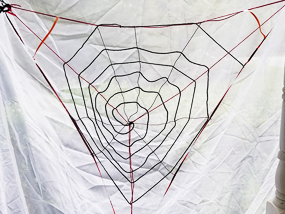 DIY Orb Weaver Spider Web