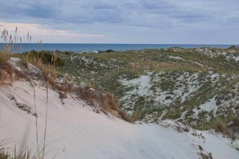 Barrier island ecology scenery