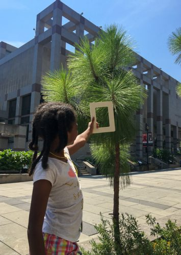 Girl holding frame up to longleaf pine tree.