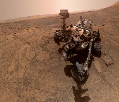 Curiosity selfie 2020