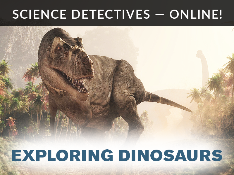 Science Detectives Online Exploring Dinosaurs