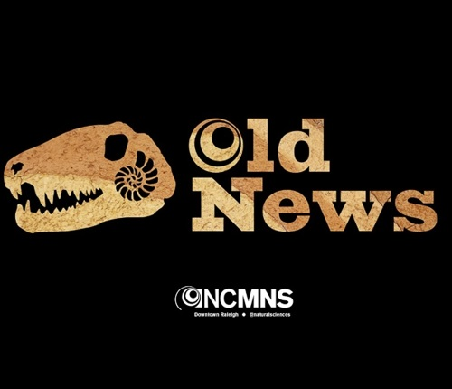 The Old News logo featuring a therapod skull