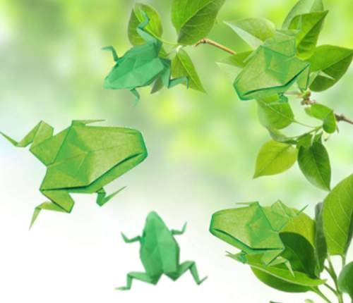 Green origami frogs and green leaves