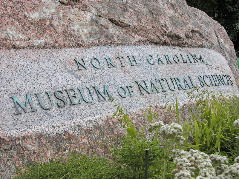 """Granite boulder with """"North Carolina Museum of Natural Sciences"""" engraved on its face."""