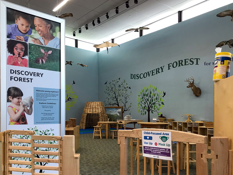 The Discovery Forest at Whiteville.