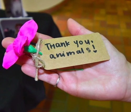 A hand holding a sign saying thank you animals