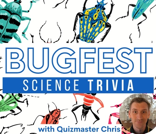 """Bugs with words that say """"BugFest Science Trivia"""""""