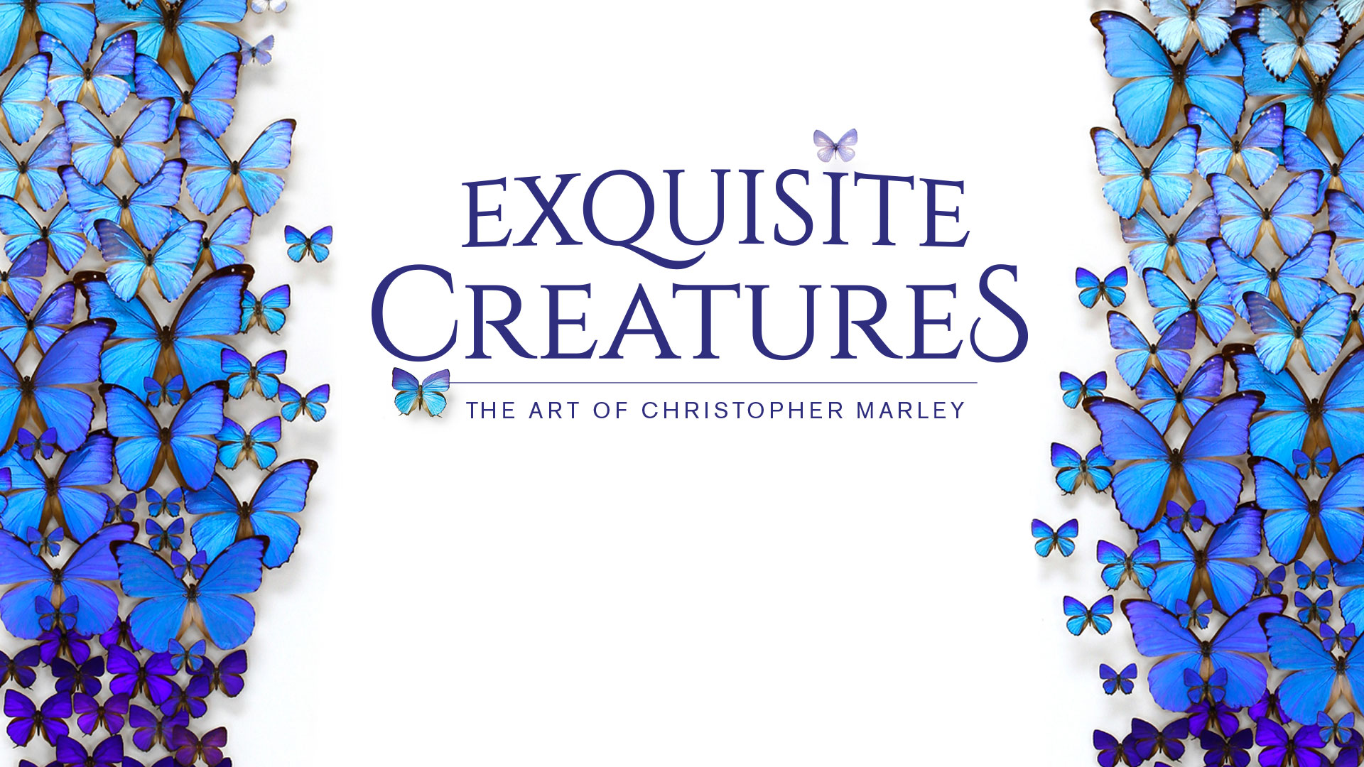 Exquisite Creatures: The Art of Christopher Marley
