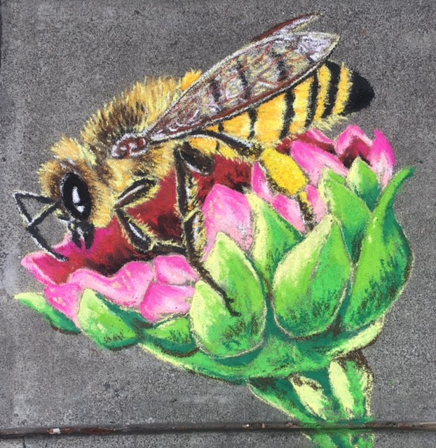 a honeybee on a thistle in chalk