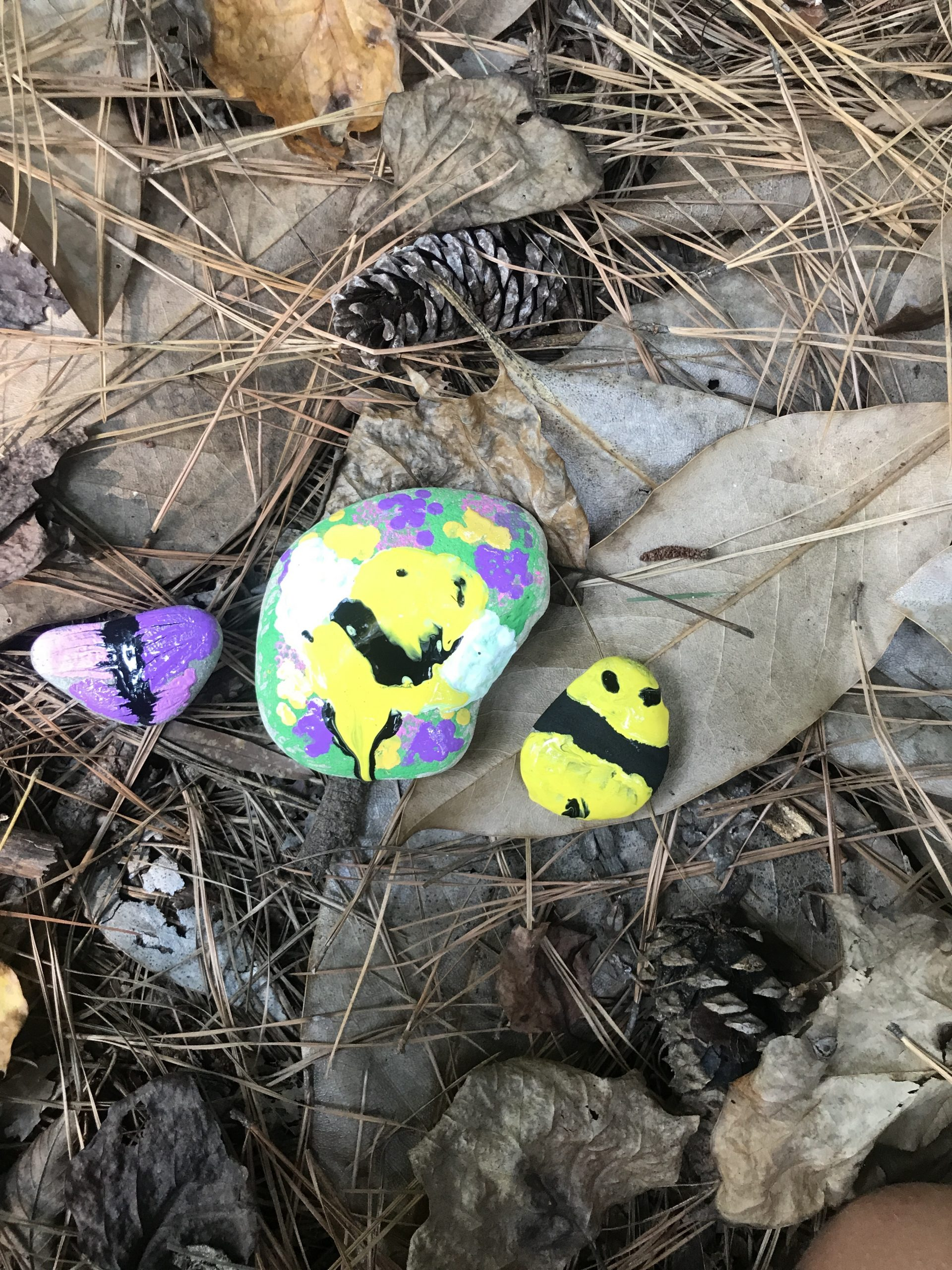 Three rocks painted like bees