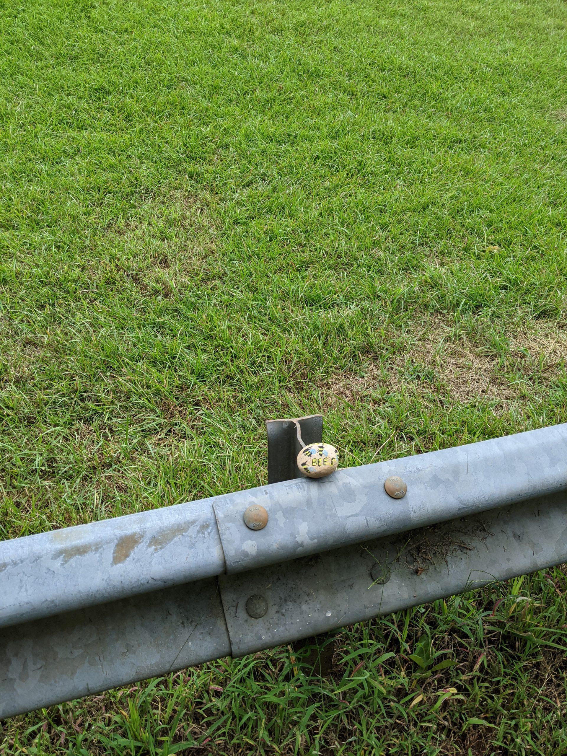 A bee rock on a guard rail