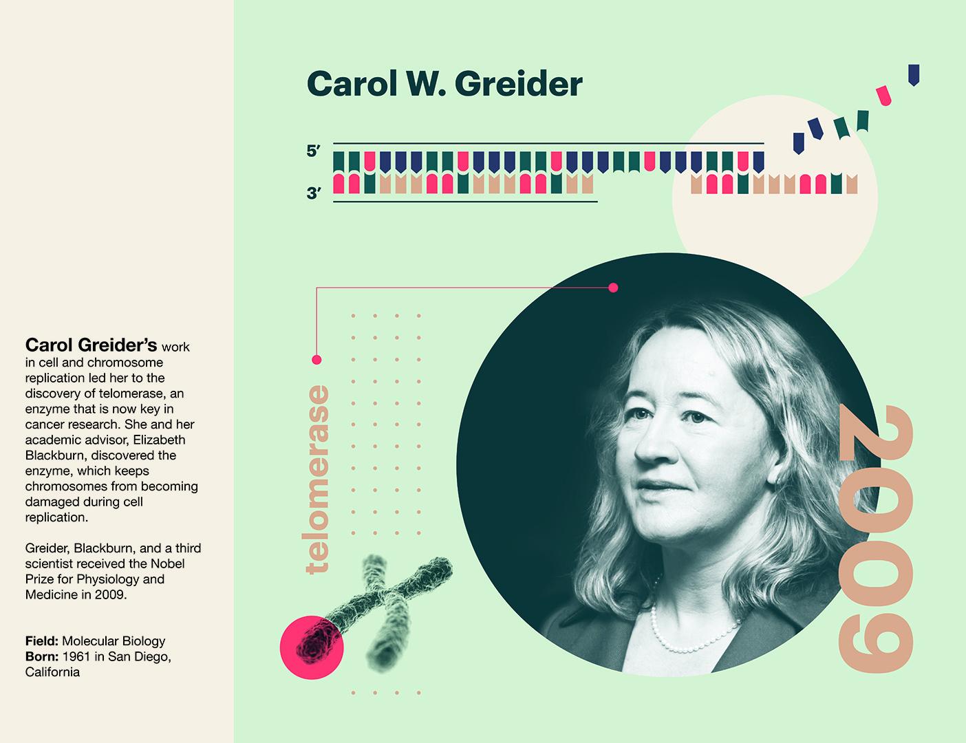 Carol W Greider