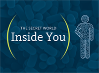 The Secret World Inside You
