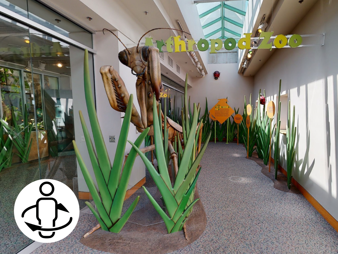 Arthropod Zoo Virtual Tour