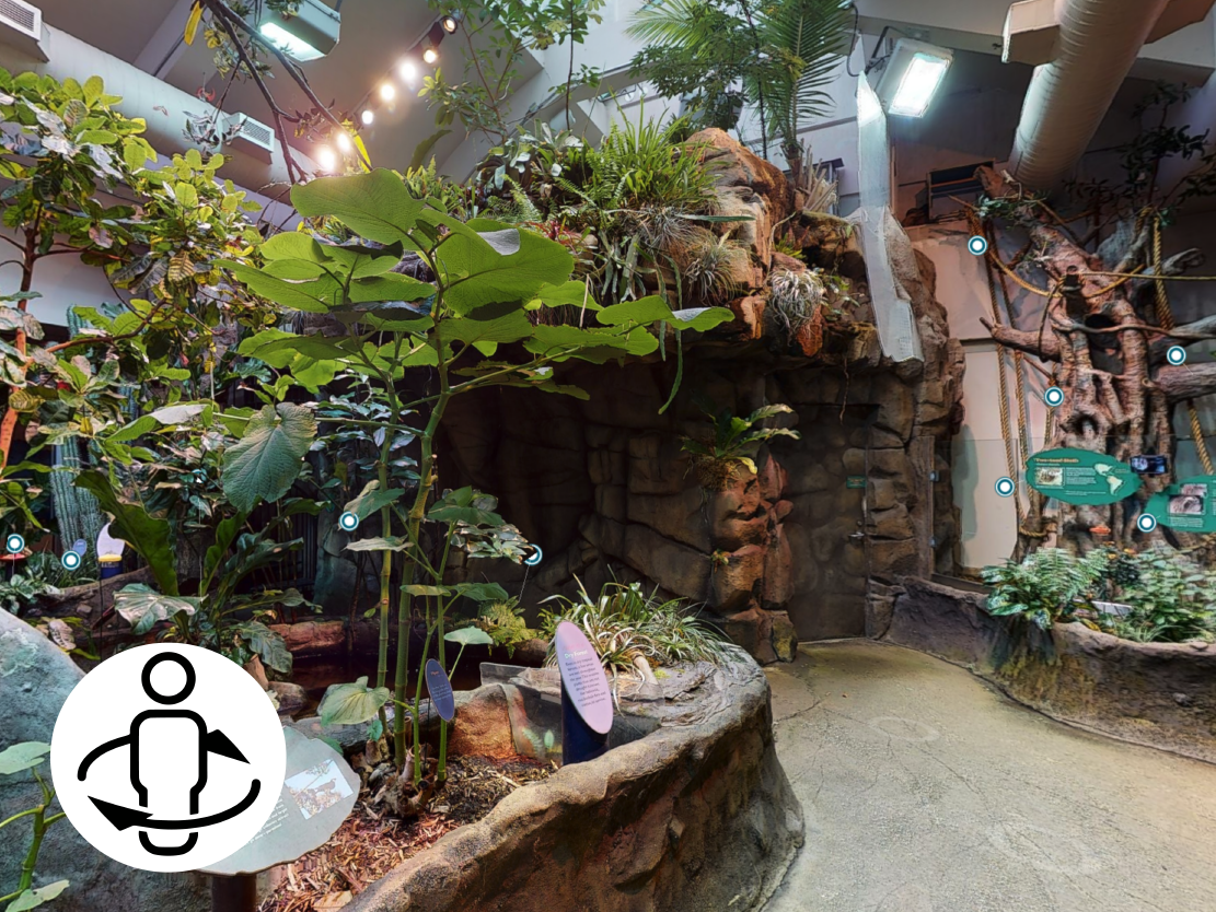 Living Conservatory Virtual Tour