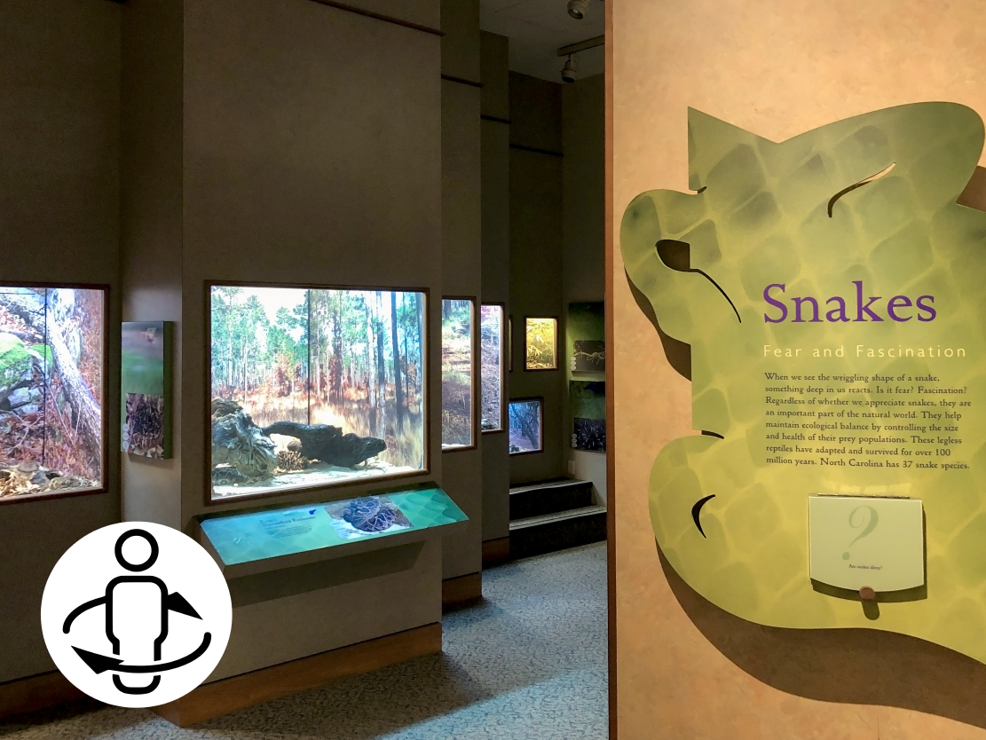 Snakes of NC Virtual Tour