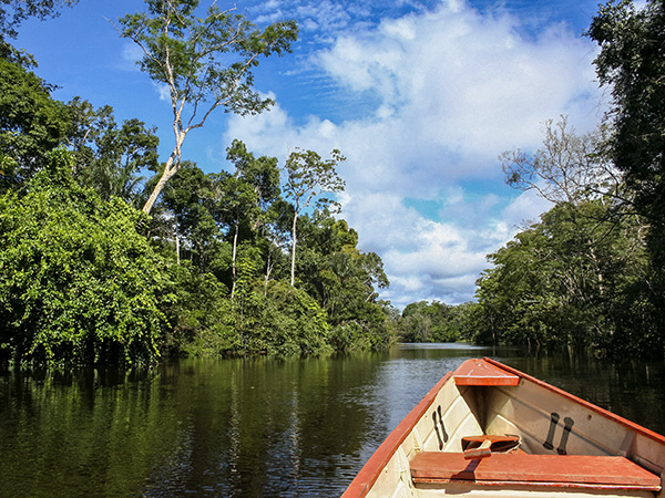 Canoeing in the Amazon. Photo: Megan Davis/NCMNS