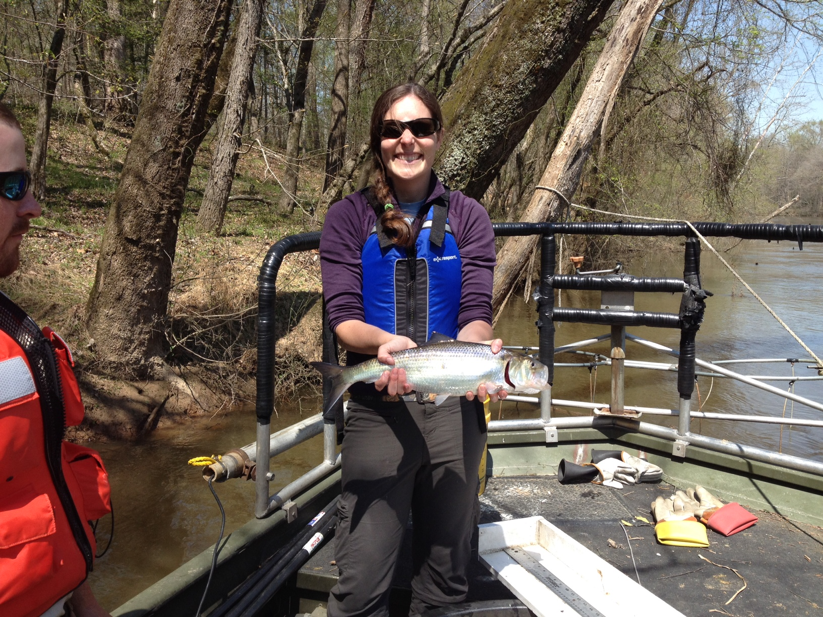 Melissa Dowland with an adult American shad