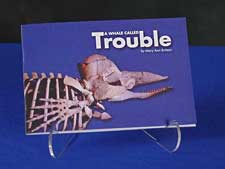 A Whale Called Trouble booklet
