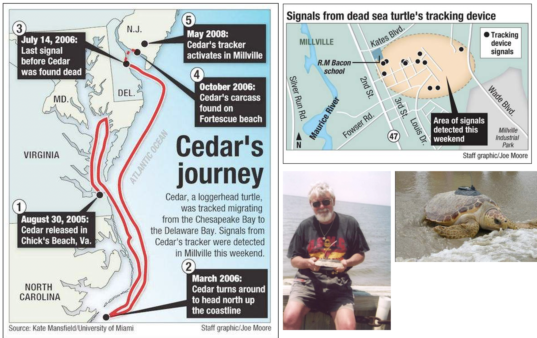 "Images from ""Dewy"" the turtle the newspaper called 'Cedar' in their story to help me find the tag. Also pictured is William who found the tag."