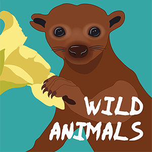 WILD ANIMALS PODCAST