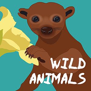 Wild Animals Podcast.